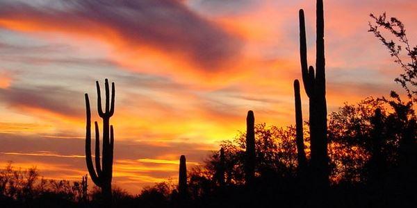 Arizona Hotel Toubstone Tour